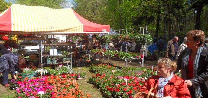 Wiosenne Targi Ogrodnicze ''Pamiętajcie o ogrodach''