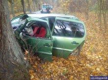 Uderzył w jelenia, a później w drzewo