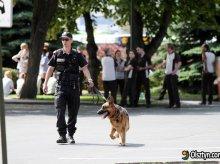 Kolejny, fałszywy alarm bombowy w Olsztynie
