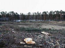 Nie będzie pensjonatu nad jeziorem Ukiel. Miasto idzie o krok dalej – zmieni plan zagospodarowania