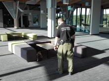 Zostawili bagaż na lotnisku Olsztyn-Mazury. Postawili na nogi służby
