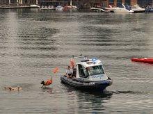 Policyjne psy dostały obrożę z GPS-em
