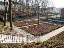 Miejskie planty coraz bliżej [ZDJĘCIA]