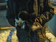 Stał pod sklepem i sprzedawał szczeniaki. Nie wiedział, że to nielegalne