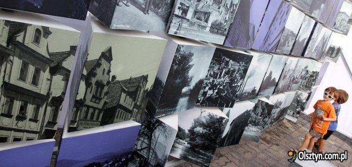 ''Wrastanie''. Interaktywna wystawa w centrum Olsztyna [ZDJĘCIA]