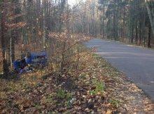 Kierowca volkswagena wypadł z drogi i uderzył w drzewo