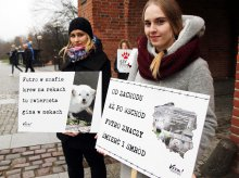 Dzień bez futra w Olsztynie. Obrońcy praw zwierząt wytykają politykom opieszałość [ZDJĘCIA]