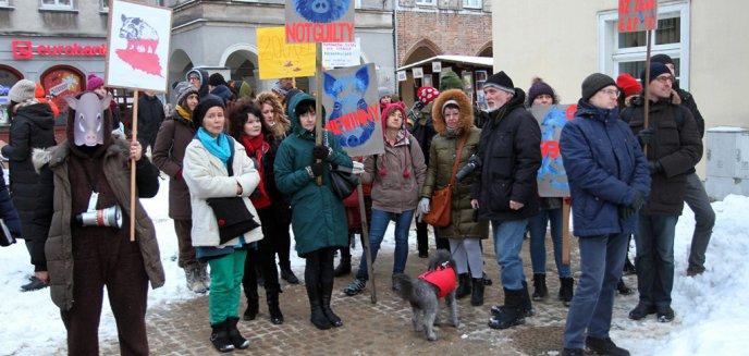 ''Bioasekuracja, nie eksterminacja''. Mieszkańcy Olsztyna stanęli w obronie dzików [ZDJĘCIA]