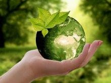 ''Strajk dla Ziemi'' odwołany z powodu żałoby