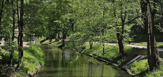 Kolejny przetarg na zagospodarowanie terenu ogródków restauracyjnych w Parku Podzamcze