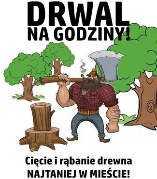 Cięcie rąbanie drzewa kominkowego
