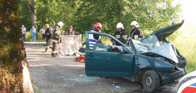 Artykuł: 19-latka straciła panowanie nad autem. Uderzyła w drzewo