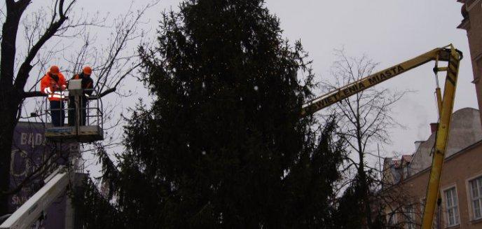 Artykuł: Choinka w centrum stroi się na Święta