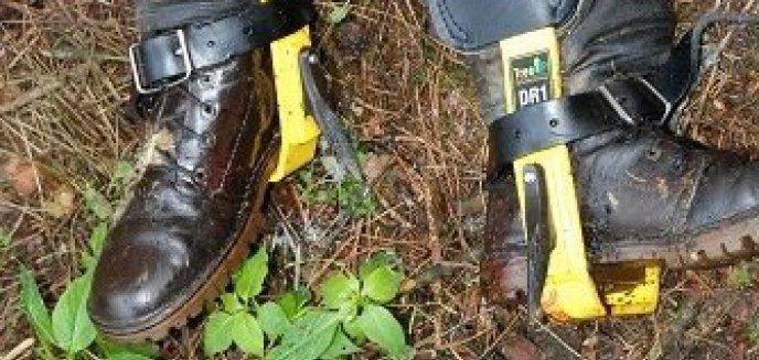 Artykuł: Minął rok od znalezienia zwłok w lesie. Kim był mężczyzna, który wspinał się po drzewach?