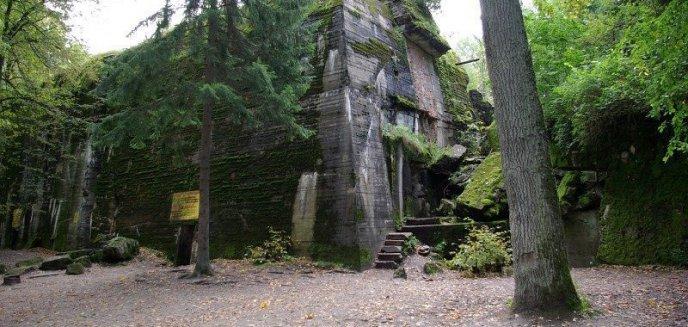 Artykuł: Wilczy Szaniec ostatecznie odzyskany przez Lasy Państwowe