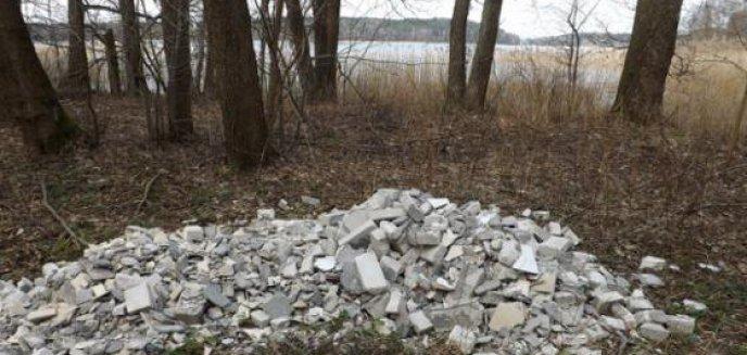 Artykuł: Za zaśmiecanie lasów płacimy wszyscy