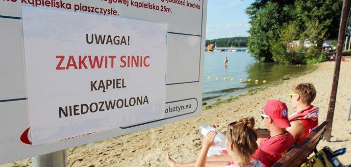 Artykuł: Sinice ustąpiły z kolejnego kąpieliska. Słoneczna Polana już bezpieczna