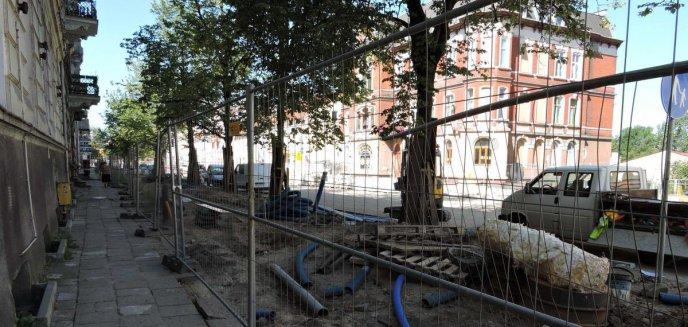 Artykuł: Miasto postara się o dofinansowanie na przebudowę kilometrów sieci kanalizacji deszczowej