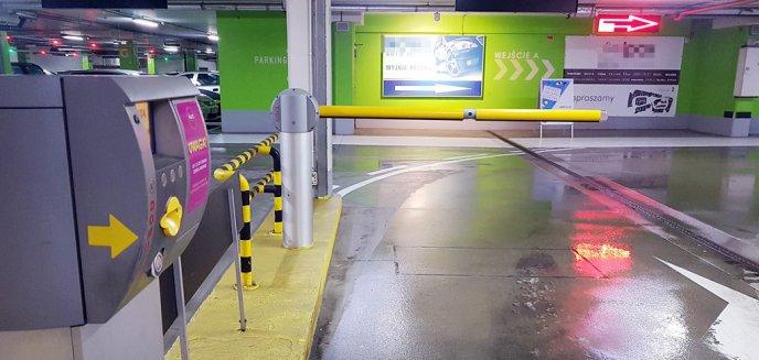Artykuł: Koniec bezpłatnego parkingu w Aurze
