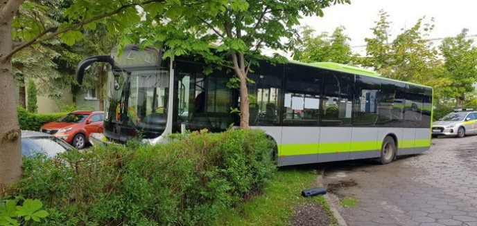 Artykuł: Kierowca autobusu na Pieczewie uderzył w drzewo i uszkodził dwa pojazdy [ZDJĘCIA]