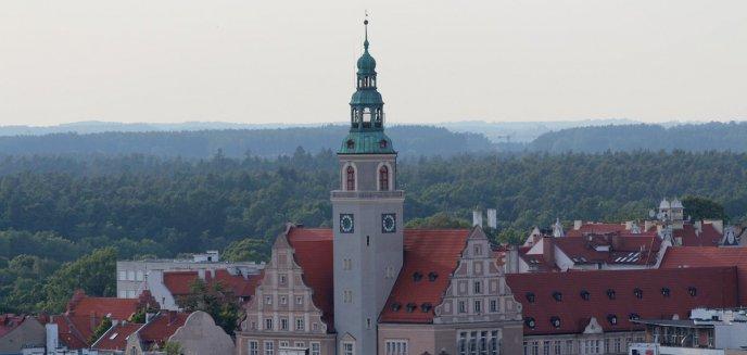 Artykuł: Miasto szuka chętnych do koordynowania OBO