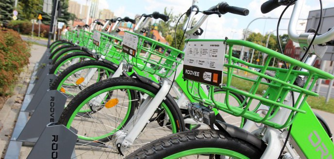 Artykuł: Miasta stawiają na szybszą podróż rowerem. Jak to wygląda w Olsztynie?