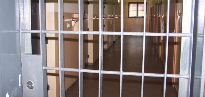 Artykuł: 22-latek został złapany na gorącym uczynku podczas kradzieży. Był poszukiwany
