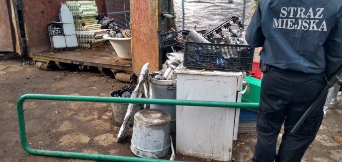 Artykuł: Ukradł barierki przy wejściu do Lasu Miejskiego, by sprzedać je na złom