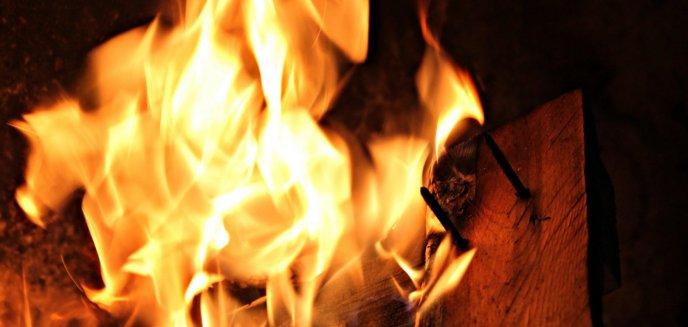 Artykuł: Tragiczny pożar altanki w Olsztynie. Strażacy znaleźli zwłoki