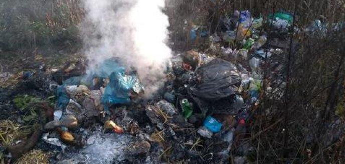 Artykuł: Palą śmieci na działkach i zanieczyszczają powietrze