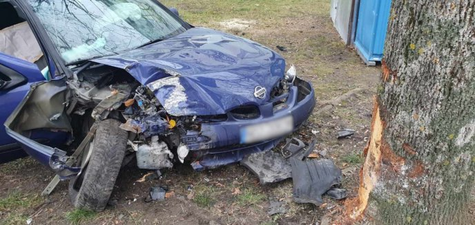 31-latek ukradł tablice rejestracyjne i autem uderzył w drzewo na al. Piłsudskiego w Olsztynie [WIDEO]