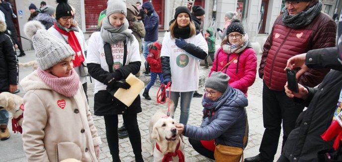 Artykuł: WOŚP 2020. W Olsztynie już padł rekord, a to nie koniec licytacji