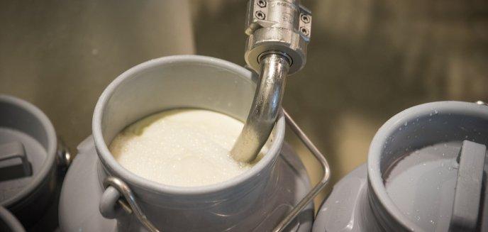 Koronawirus z Chin wpływa na branżę mleczarską w regionie