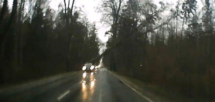 Artykuł: Krok od tragedii. Wiatr powalił drzewo tuż za samochodem na drodze krajowej między Olsztynem a Dywitami [WIDEO]
