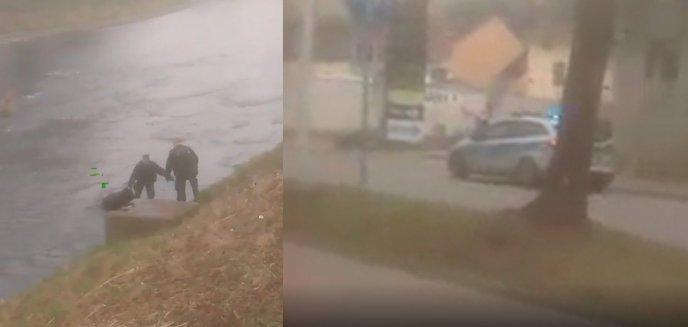 Artykuł: Co za wstyd! 52-letni mieszkaniec Olsztyna wybrał się wpław przez rzekę do... Czech po alkohol [WIDEO]