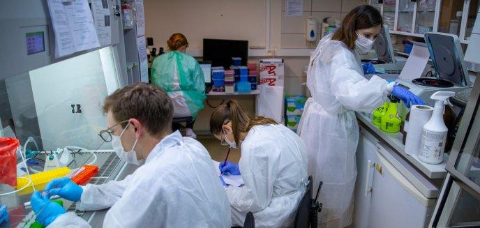 Artykuł: Jarosław Gowin: ''Polski test na koronawirusa w 100 proc. skuteczny!'' W przyszłym tygodniu ruszy produkcja