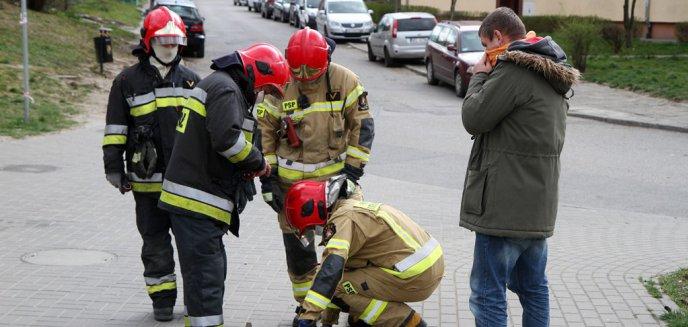 Artykuł: Mała kaczuszka wpadła do studzienki deszczowej na ul. Katowickiej w Olsztynie. Strażacy nie byli w stanie pomóc [ZDJĘCIA]