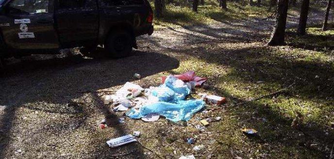 Artykuł: Remontował dom, a śmieci wyrzucił do lasu pod Olsztynem. Winę zrzucił na robotników