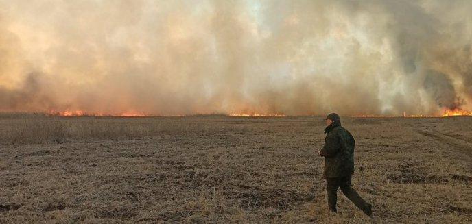 Artykuł: Pożar nad Biebrzą – czy ogień dojdzie na Mazury?