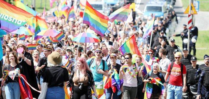 Artykuł: Koronawirus. II Olsztyński Marsz Równości odbędzie się, ale kiedy?