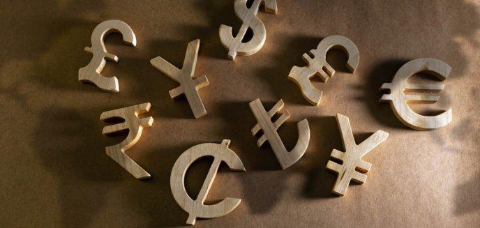 Artykuł: Wymiana walut online - na czym polega?