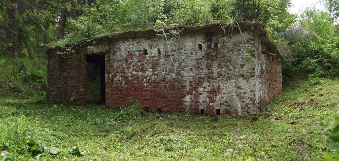 Artykuł: Niezwykłe znalezisko w lesie przy granicy z Rosją [ZDJĘCIA]