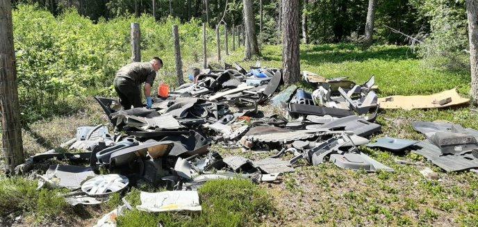 Artykuł: ''Trudno znaleźć słowa w takiej sytuacji''. Ktoś wyrzucił do lasu... części samochodowe