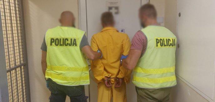 Artykuł: Włamywali się do domów pod Olsztynem. Ukradli pieniądze, biżuterię, a nawet... owczarka niemieckiego