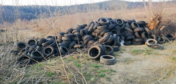 Artykuł: Policja odkryła nielegalne składowisko opon i zbiorników po paliwie w gminie Purda