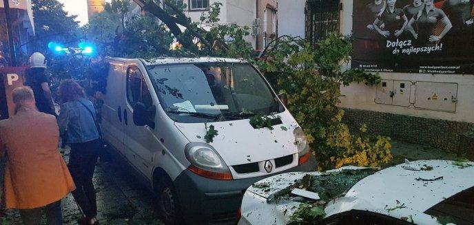 Artykuł: Nawałnica przeszła nad Olsztynem. Na ul. Sielskiej drzewo powaliło się na dom [ZDJĘCIA]