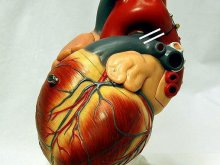 Transplantologia - temat tabu?