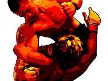 Promocja olsztyńskiego MMA - Promocją miasta