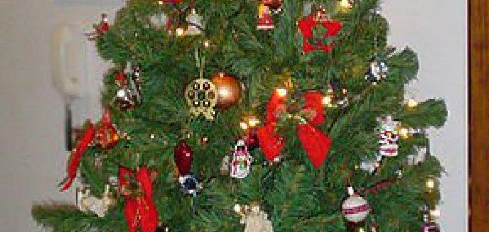 Artykuł: Urok świątecznej tradycji