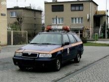 Policyjna Straż Miejska?